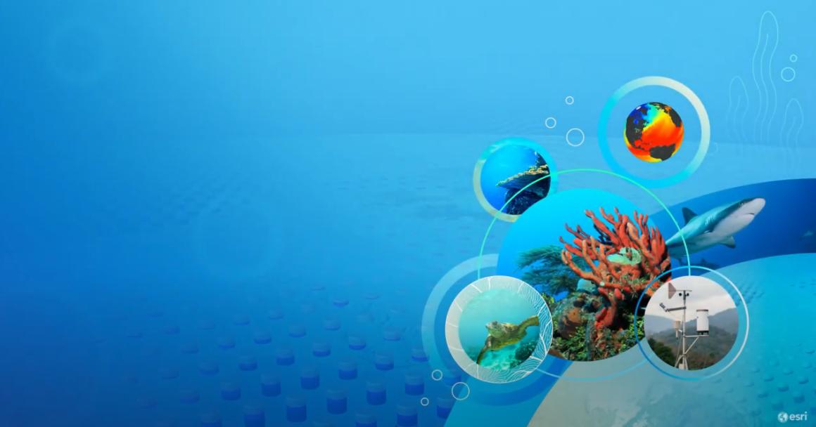 Esri GIS im Einsatz für Meer und Klima