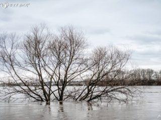 Lerneinheit «Hochwasser»: Virtuelle StoryMap-Exkursion
